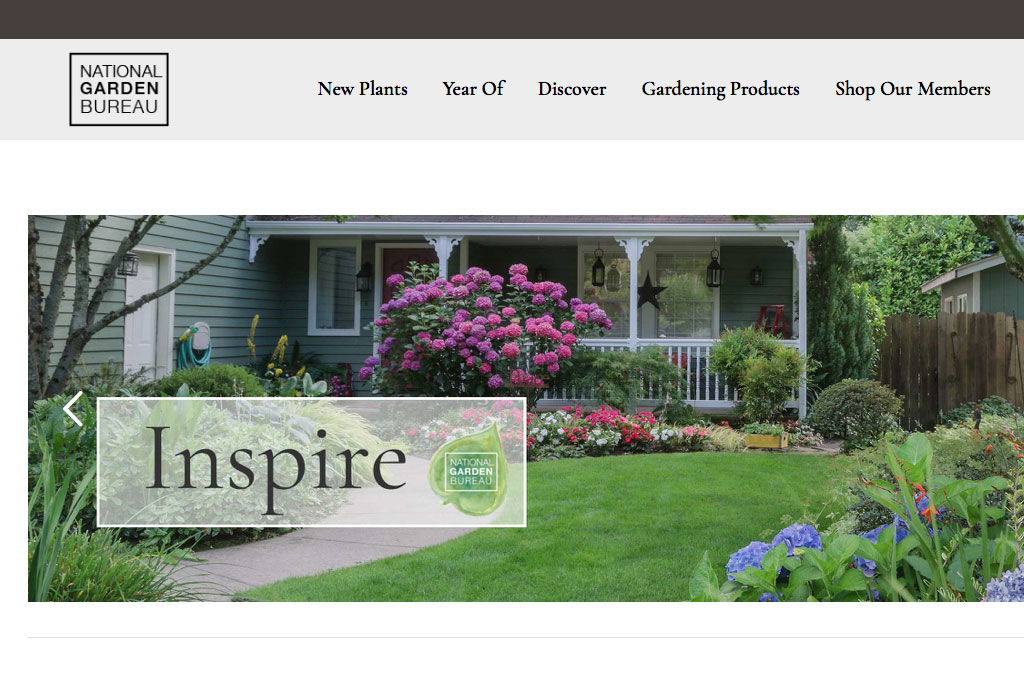 NGB non profit website design